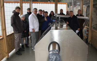 Composting at MEF Schools, Istanbul, Turkey