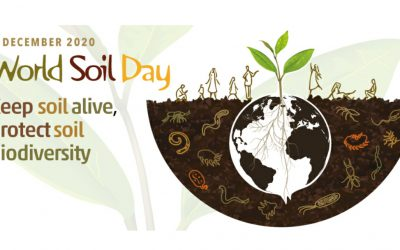 5th of December – The World Soil Day